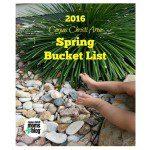 2016 Corpus Christi Area Spring Bucket List