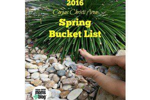 Featured Image Spring Bucket list