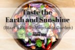 Taste the Earth and Sunshine- Start a Family Vegetable Garden, Corpus Christi Moms Blog