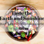 Taste the Earth and Sunshine {Start a Family Vegetable Garden}