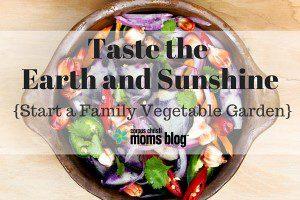 Taste the Earth and Sunshine- Start a Family Vegetable Garden, Corpus Christi Moms Blog