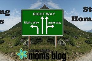 Working Mom vs. Stay at Home Mom: Fanning the Feud- Corpus Christi Moms Blog