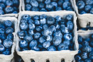blueberries- Corpus Christi Moms Blog