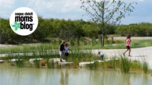 Oso Bay Wetlands and Rock hopping- Corpus Christi Moms Blog