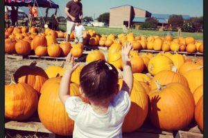 32 Ideas to Add to Your Family's Fall Bucket List- Pumpkin Patch- Corpus Christi Moms Blog