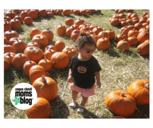 Picking the right pumpkin at the pumpkin patch