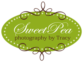 sweet-pea-by-tracy-logo-corpus-christi-moms-blog-photographer-guide