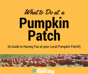 what-to-do-at-a-pumpkin-patch