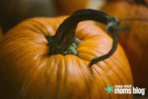 ccmb-pumpkin