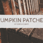 Pumpkin Patches in Corpus Christi {Here's the Scoop}