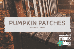 Pumpkin Patches in Corpus Christi {Here's the Scoop}- Corpus Christi Moms Blog