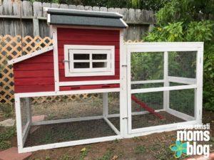 corpus-christi-mom-blog-chicken-coop