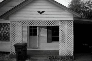 Love Where You Live: San Patricio County- Our Home- Corpus Christi Moms Blog