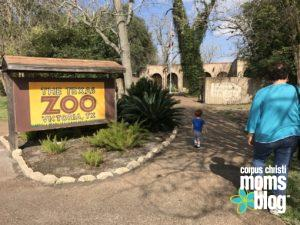 Easy Travel- Texas Zoo- Reasons Our Family Loves Life in Corpus Christi- Corpus Christi Moms Blog