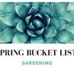 Gardening Tops My Spring Bucket List