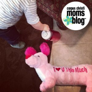 5-Things-Learned-Toddler-Mom-Best-Free-Waterbottle-Corpus-Christi-Moms-Blog