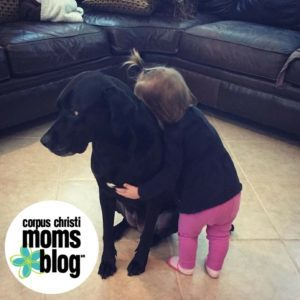 5-Things-Learned-Toddler-Mom-Love-Dog-Corpus-Christi-Moms-Blog