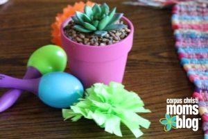 Cinco de Mayo DIY - Corpus Christi Moms Blog