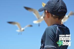 Summer Activities- Corpus Christi Moms Blog