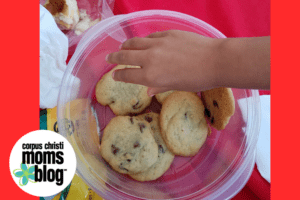Planning the perfect family picnic-cookies