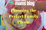 Planning the Perfect Family Picnic-Dessert