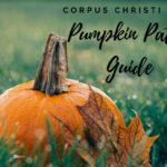 Corpus Christi Pumpkin Patch Guide {2017}