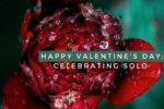 Happy Valentine's Day_