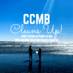 Join us at the 2020 Billy Sandifer Big Shell Beach Clean Up!