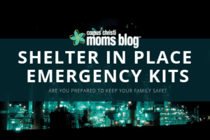 Shelter in Place Kit