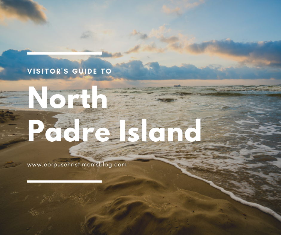 A Visitor's Guide to North Padre Island