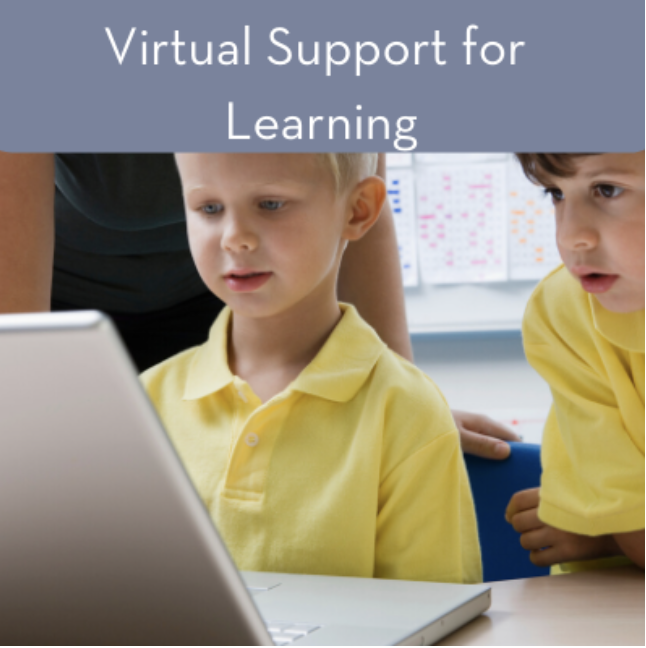 Virtual Support of Learning