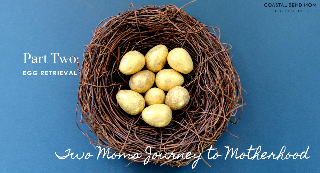 Two Moms Journey : Egg Retrieval : Corpus Christi : Coastal Bend Moms