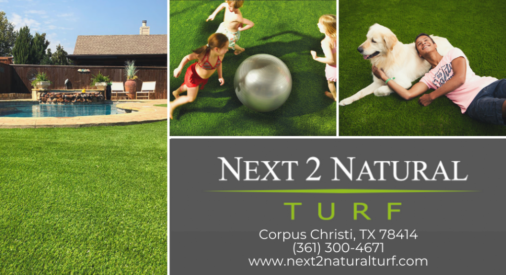 Next 2 Natural Turf